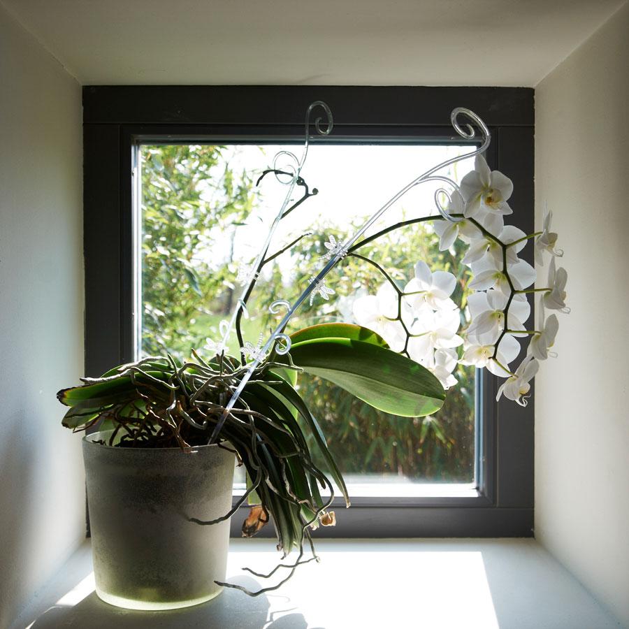 Innenarchitektur_Einfamilienhaus_Kleintobel_Fensternische_Orchidee